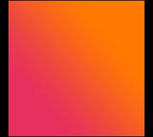 icon netwerk